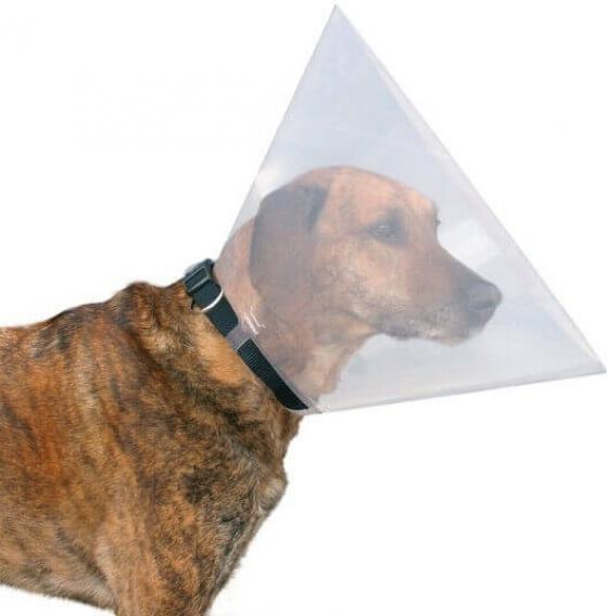 Campana para Perro Transparente Arquizoo