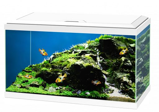 Acuario Aqua Plus 60 Led Ciano - BLANCO  65L