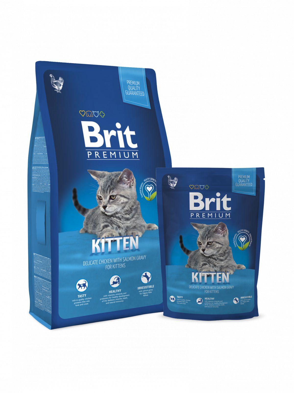 Brit Premium gato cachorro Kitten de pollo