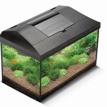 Acuario Completo Aquael Leddy Plus Negro 40 - 25 Litros