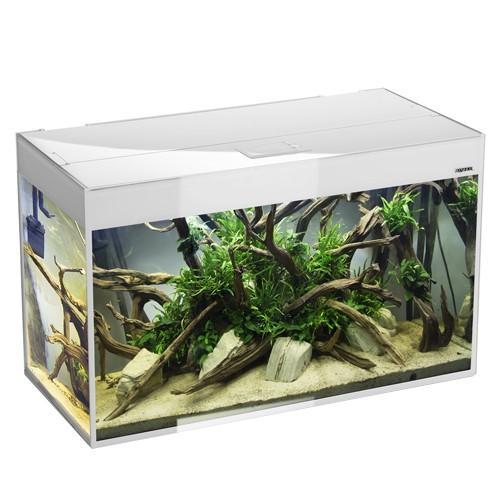 Acuario Aquael Glossy Blanco 80 - 125 Litros