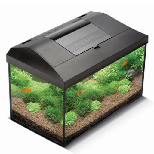Acuario Completo Aquael Leddy Plus Negro 75 - 105 Litros