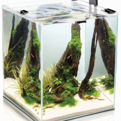 Acuario Aquael Completo Shrimp Negro 30 - 30 Litros