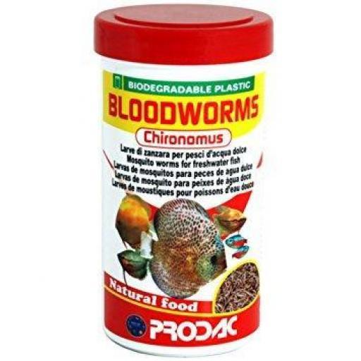 Bloodworms chironomus larva roja de mosquito