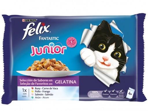 FELIX FANTASTIC JUNIOR Grill en Gelatina (4x100g)