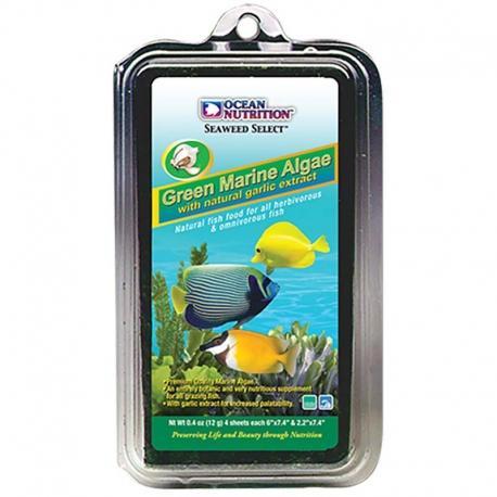 Green Marine Algae 12g