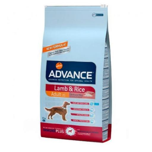 Advance Adult Cordero