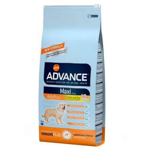 Advance Maxi Adult 14kg