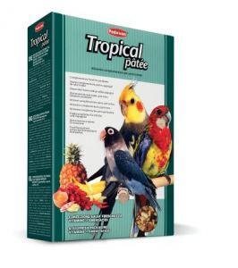 Pienso Tropical Patee - Padovan