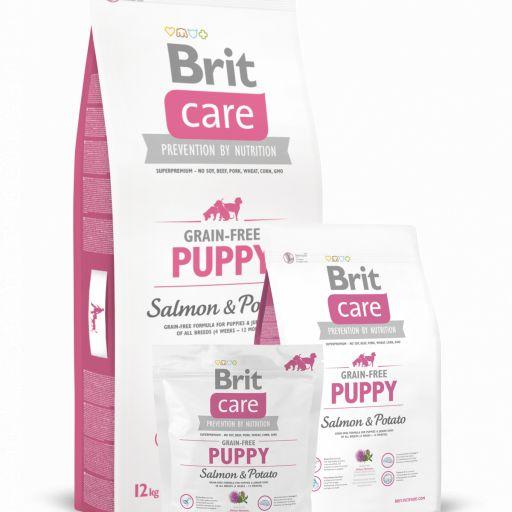 Brit Care de cachorro Salmon&Potato salmón y patata