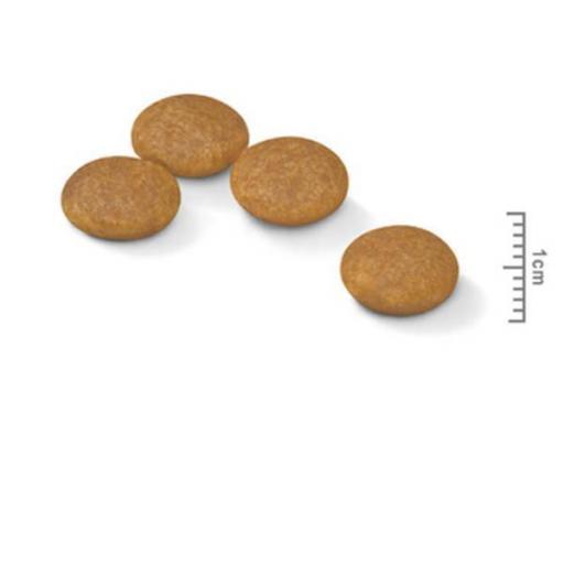 Royal Canin Mini Digestive Care 2kg [1]