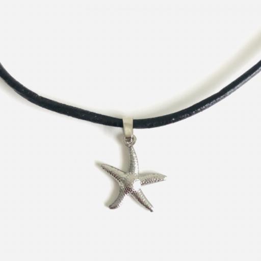 Colgante con estrella de mar plateada