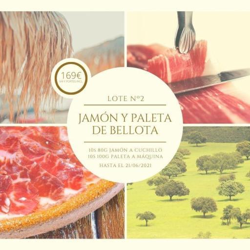 IBESA lote 2 Jamón Paleta bellota 100% ibérico
