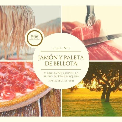 IBESA lote Jamón  Paleta bellota 100% ibérico