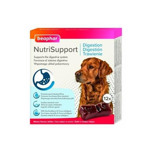 nutrisupport_suplemento_nutricional_perro_digestion