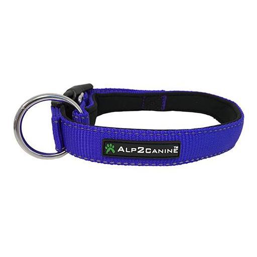 collar-nylon-azul-Perro-reflectante [3]