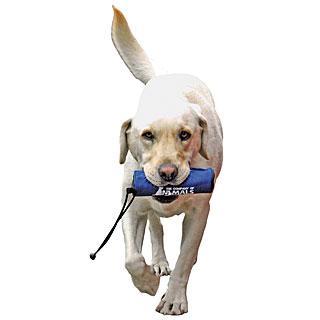 Motivador rellenable para perros CLIX