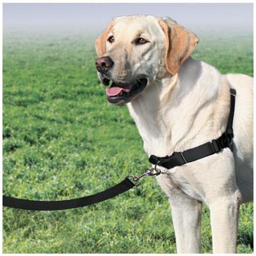 Arnés especialmente diseñado para los perros que tiran EASY WALK