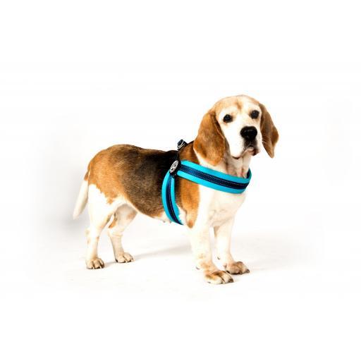 Arnes para perros de facil colocacion QFIT