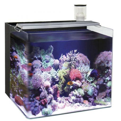 Nano acuarios marinos grandes OCEAN FREE
