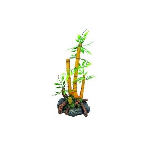 Bambú con plantas para la decoración de acuarios AMTRA