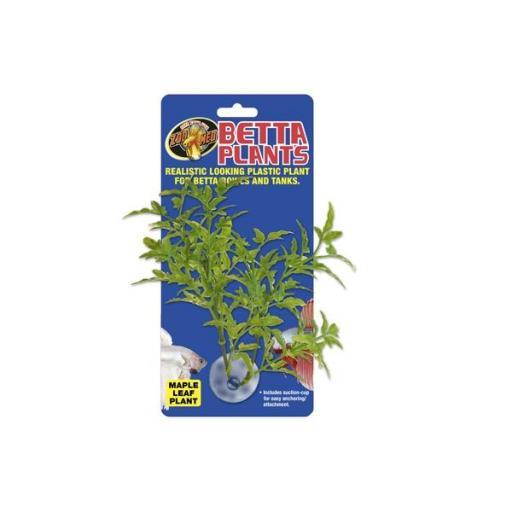 Plantas para beteras ZOOMED [3]