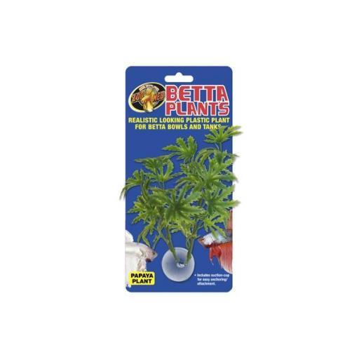 Plantas para beteras ZOOMED [2]