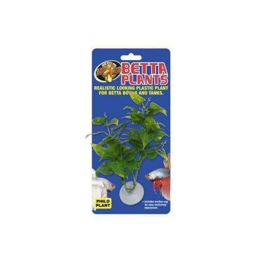 Plantas para beteras ZOOMED [1]