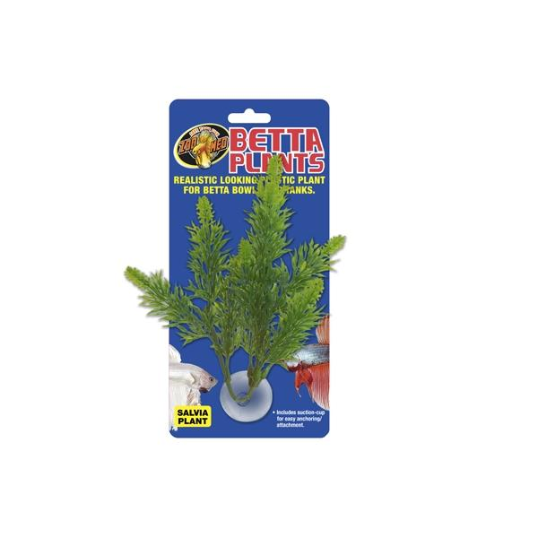 Plantas para beteras ZOOMED