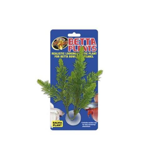 Plantas para beteras ZOOMED [0]