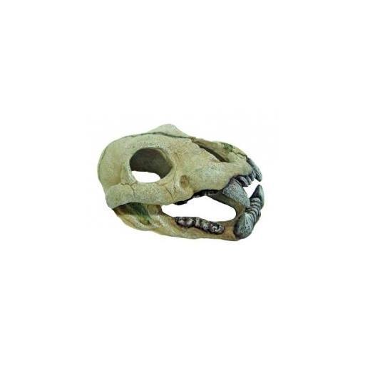 Calavera decorativa para acuarios de jaguar AMTRA
