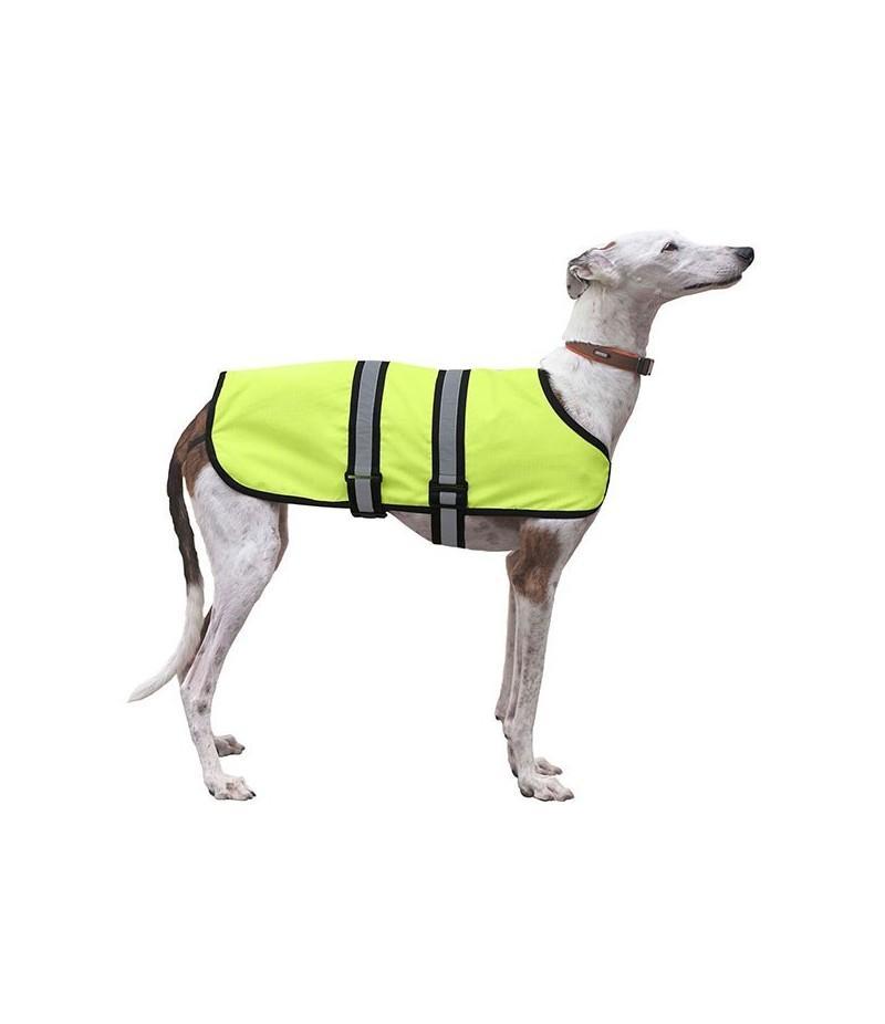 capa_impermeable_neon_perro