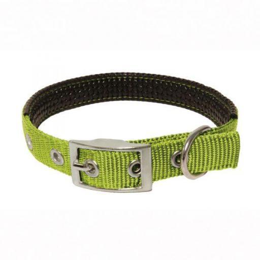 Collar acolchado con hebilla para perros