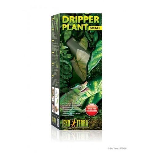 Planta con sistema de goteo DRIPPER PLANT