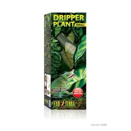 Planta con sistema de goteo DRIPPER PLANT [0]