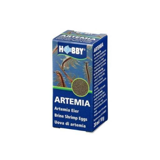 Huevos de artemia