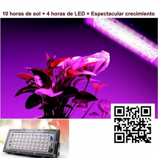 LED Quantum de crecimiento.  50W. 220VAC. [3]