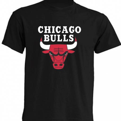 CAMISETA CHICAGO BULLS