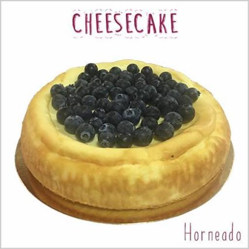 Cheesecake horneado [1]