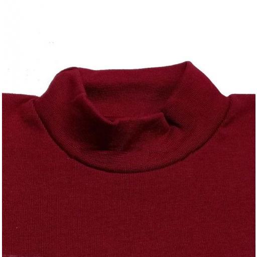 Camiseta semicisne colores calamaro 20007.jpg [2]