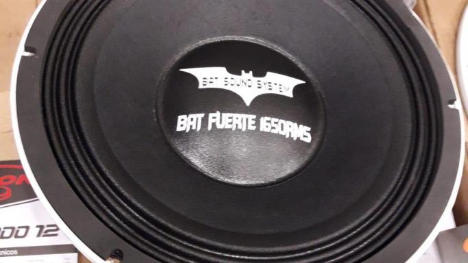 "BAT FUERTE 1650 RMS 12"""