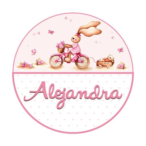 VINILO INFANTIL: Vinilo redondo para puerta conejita con bici [1]