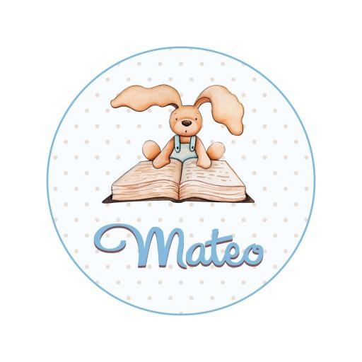 VINILO INFANTIL: Vinilo redondo para puerta conejo con libro [1]