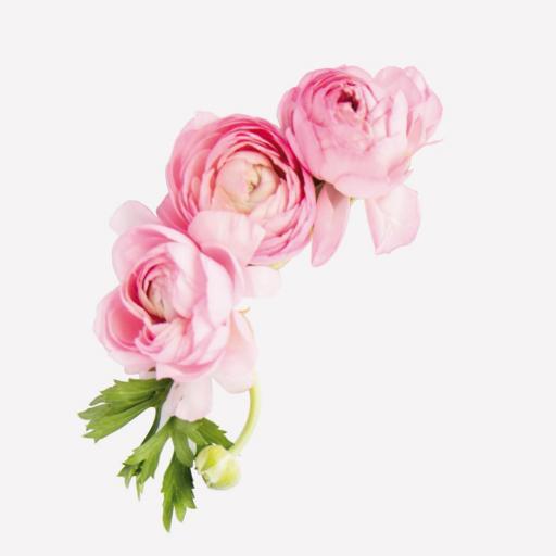 VINILO INFANTIL: Flores grandes  [2]