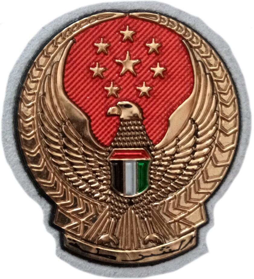 Policía Abu Dhabi ciudad capital de Emiratos Árabes Unidos parche insignia emblema distintivo
