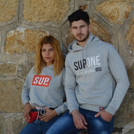 HOODIE COLLECTION GRIS [2]
