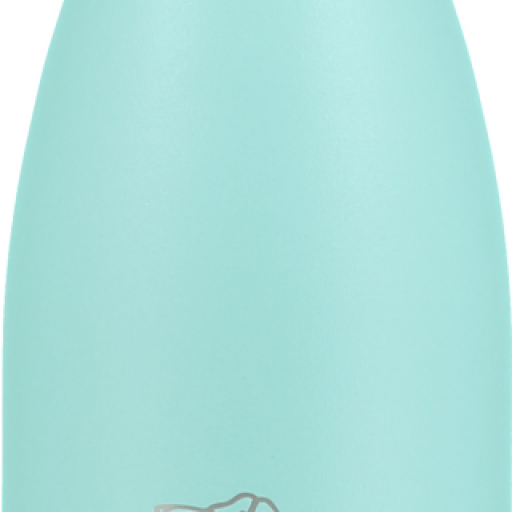 BOTELLA CHILLYS 260 ML MENTA PASTEL