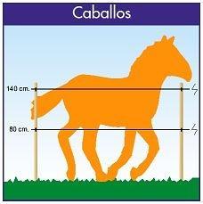 diseño cercado electrico para caballos