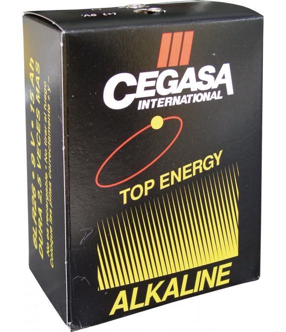 Pila pastor alkalina