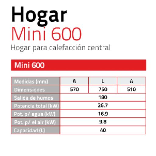 Hidro Insertable de LEÑA Mini 600 26,6Kw [1]